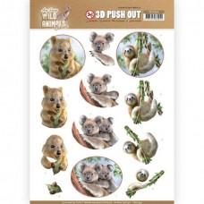 Amy Design - Wild Animals Outback - 3D Pushout - Koala