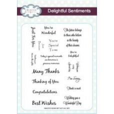 Delightful Sentiments A5 Clear Stamp Set