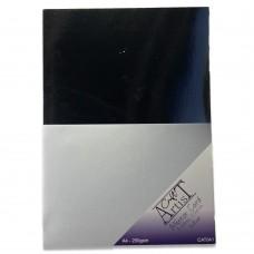 Craft Artist Mirror Card A4 - Silver
