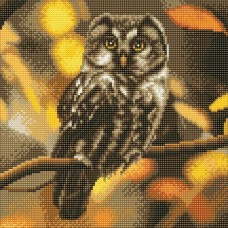 Tawny Owl - Crystal Art Kit 30cm
