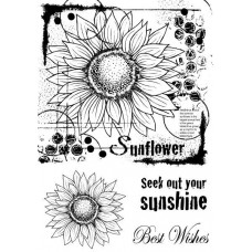 Woodware A5 Clear Singles Stamps - Sunflower Sketch