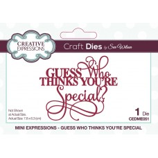 January Collection - Mini Expressions - Guess Who Thinks You're Special