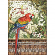 Stamperia - Amazonia - A4 Rice Paper - Parrot