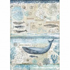Stamperia - Rice Paper - History Of The Whale
