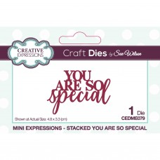 January Collection - Mini Expressions - Stacked You Are So Special