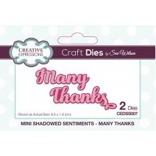 Mini Shadowed Sentiments - Many Thanks