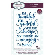 Expressions Collection - Mix and Match Friendship Die