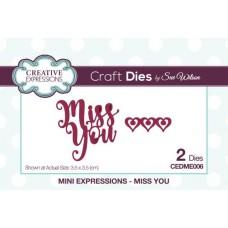 Mini Expressions - Miss You