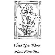 Regal Iris Set 2 Pre Cut Stamps
