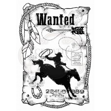 Woodware Clear Singles - Wanted