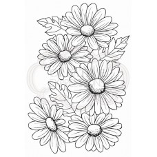 Woodware Clear Singles - Five Daisies