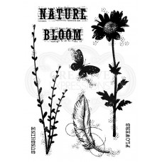 Woodware Clear Singles - Blooming Nature